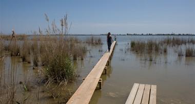 Imagenes de archivo del Delta del Ebro.